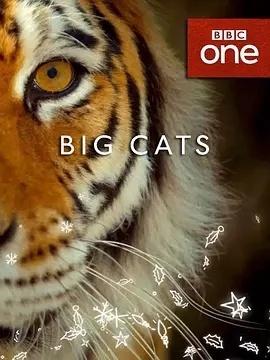 大猫第一季